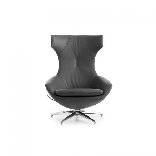 leolux-fauteuil-caruzzo-3-1.jpg