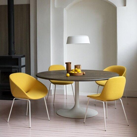 artifort-fauteuil-beso-3.jpg