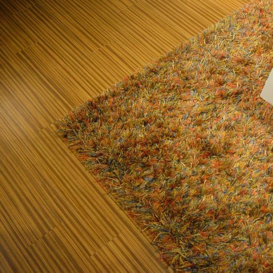 karpet-brinker-spider.jpg